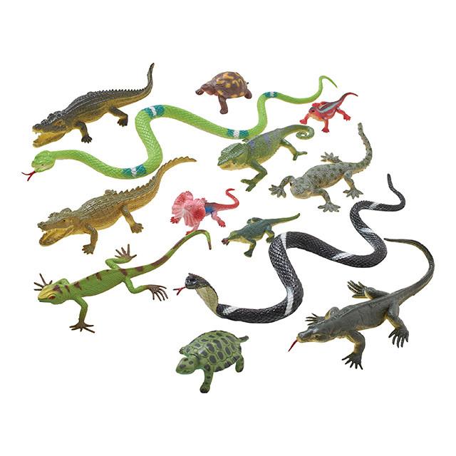 レプタイル王国 爬虫類