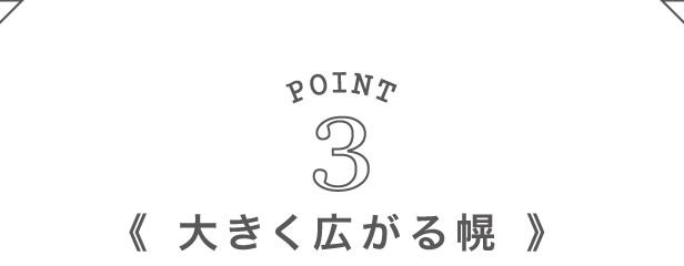 Point3:大きく広がる幌